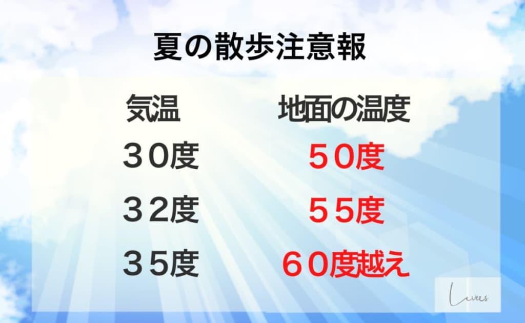 夏場の地面温度