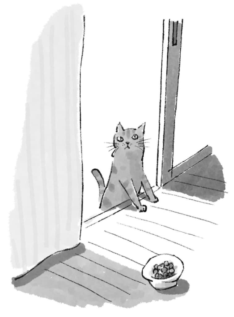 引きこもりの息子を暗闇から連れ出してくれた子猫。