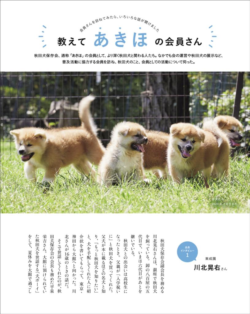 秋田犬保存会 会員への取材から、秋田犬と暮らすこと、保存会活動の一端を紹介しています。