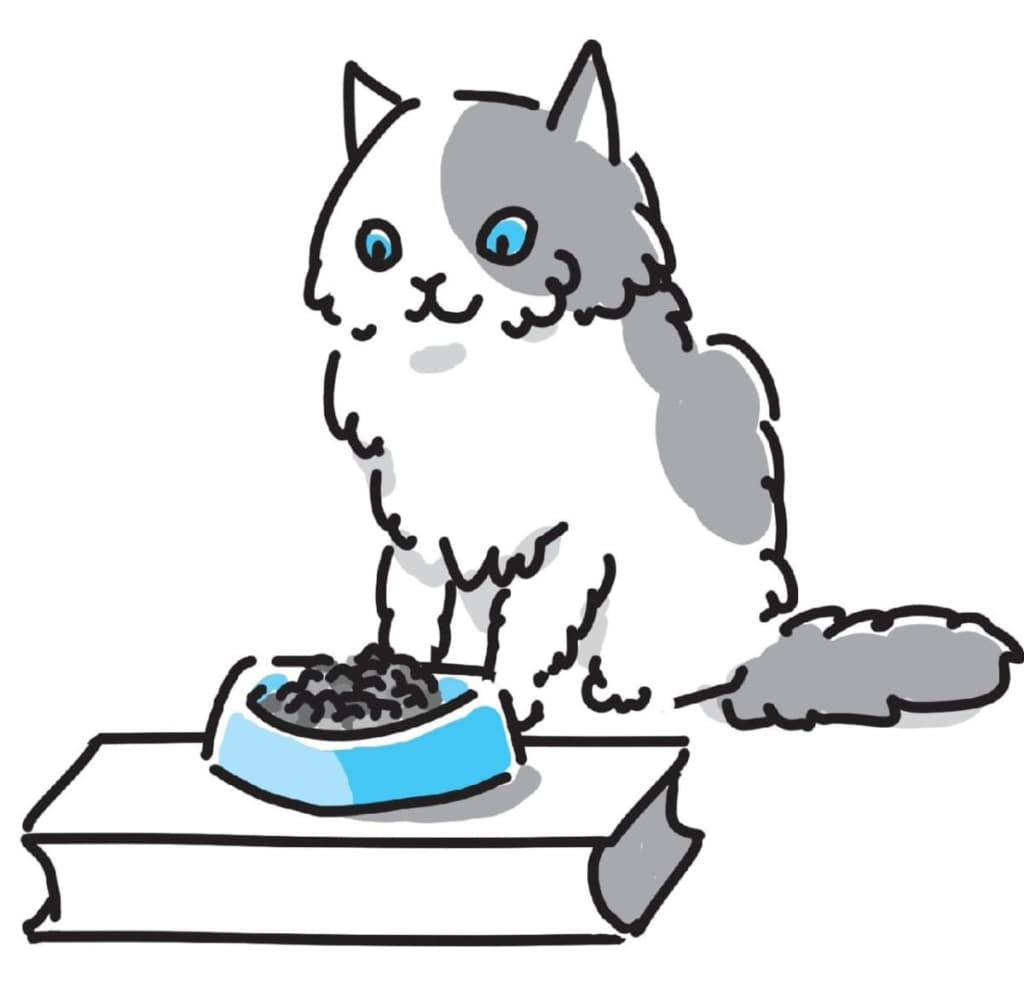 """『猫にいいこと大全』から意外に知られていない""""猫にいいこと""""3つをご紹介②食事場所は壁を背にしたほうがいい"""
