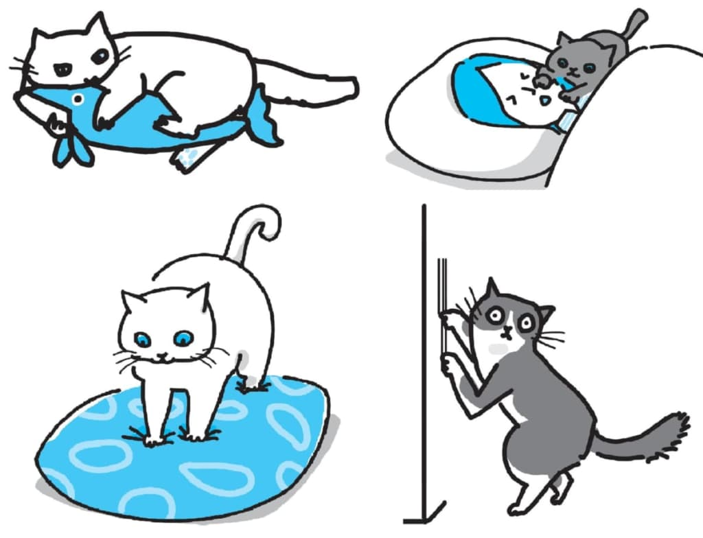 猫の生活の質をグンと上げる本『猫にいいこと大全』