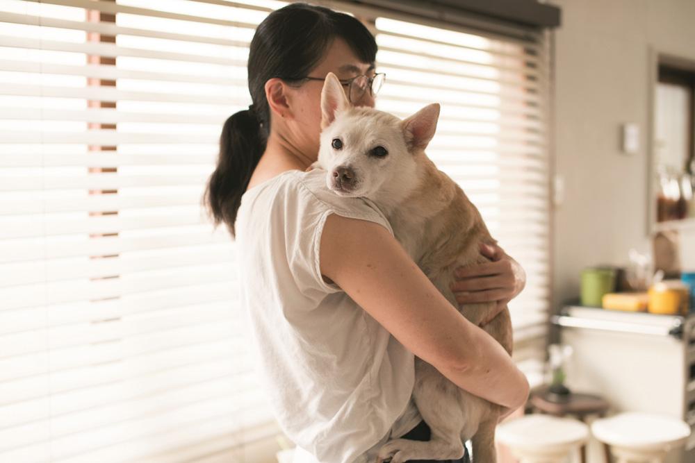 もらわれにくい犬を一匹でも救えたら。料理研究家・桑原奈津子さん